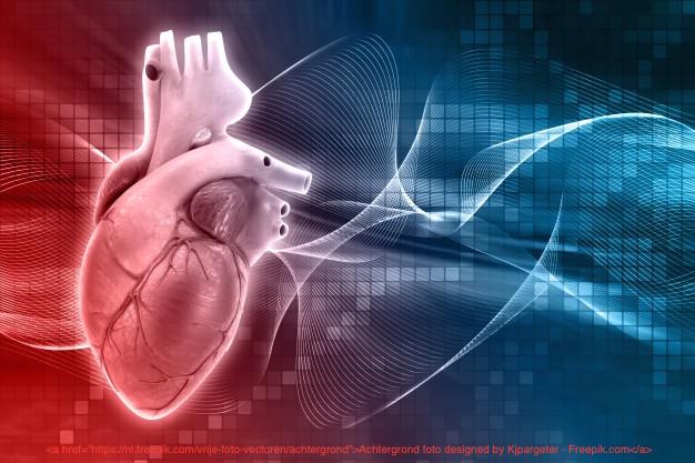 menselijk-hart-ontwerp_1048-1855
